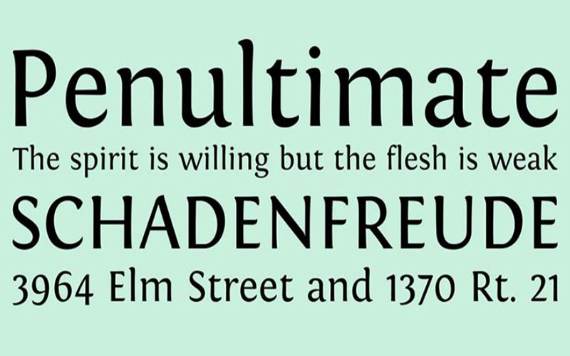 Fontin Font Family Download