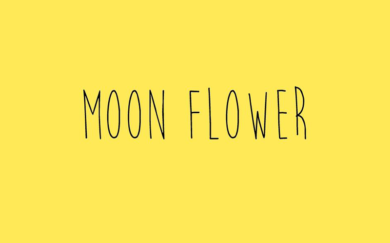 You are currently viewing Moon Flower Font Free Download