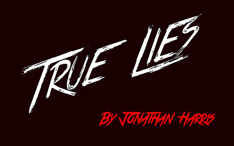 You are currently viewing True Lies Font Free Download