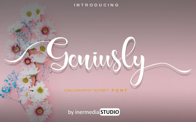 You are currently viewing Geniusly Font Free Download