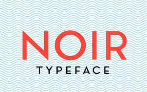 Read more about the article Noir Font Free Download