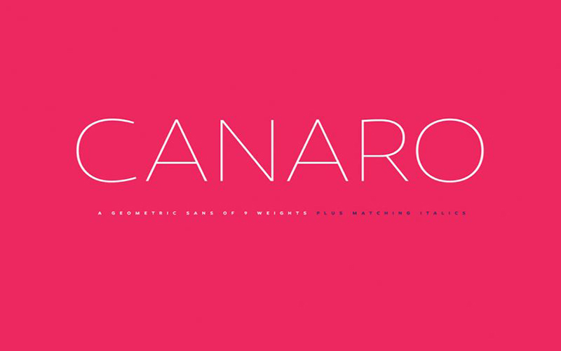 You are currently viewing Canaro Sans Font Free Download