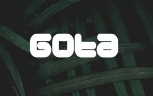 Read more about the article Gota Font Free Download