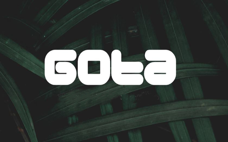 You are currently viewing Gota Font Free Download