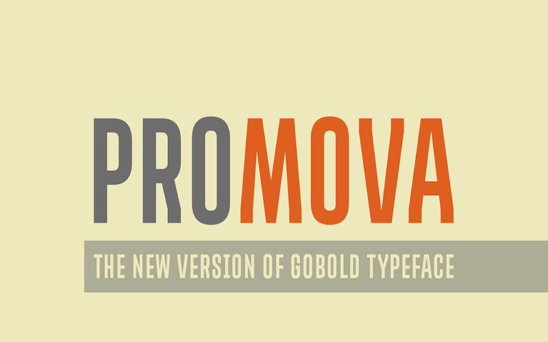 You are currently viewing Promova Font Free Download