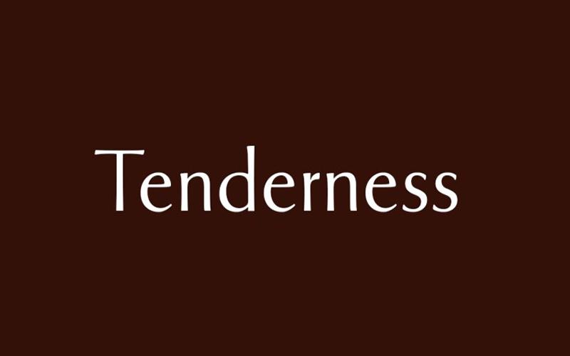 Tenderness Font Free Download